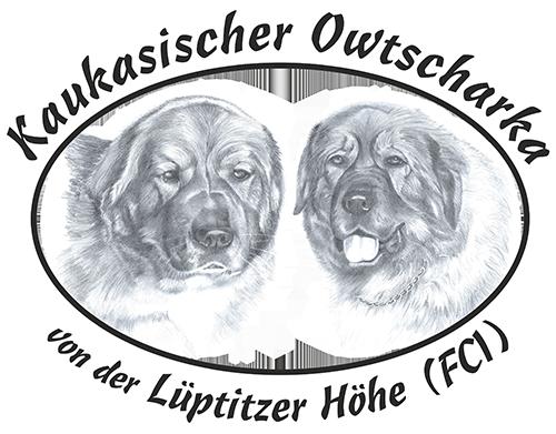 """Kaukasische Owtscharka """"von der Lüptitzer Höhe"""""""